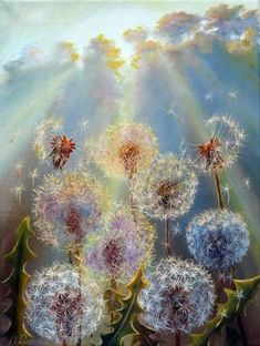 ARTFINDER: Dandelions by Oleg Riabchuk - Impressionistic oil painting with dandelions and sun rays. Oil on stretched canvas Size: The painting is ready to hang, and comes with a Certifi. Paintings For Sale, Original Paintings, Original Art, Watercolor Flowers, Watercolor Paintings, Dandelion Art, Arte Floral, Pics Art, Belle Photo