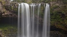 This short, easy walk suitable for buggies, leads to the stunning Rainbow Falls on the Kerikeri River. North Island New Zealand, Rainbow Falls, Parks And Recreation, Things To Do, Places To Go, Waterfall, Walking, River, Outdoor
