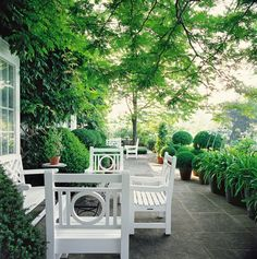 """""""Shiny white lacquer chairs, along with terracotta pots of agapanthus and clipped box balls, brighten this shady terrace at the home of Oscar de la Renta in Connecticut."""""""