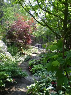 another shade garden idea