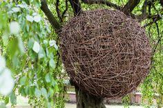 The Nest: Nidos de Madera, por Jan Tyrpekl,© Antonín Matějovský, Jan Tyrpekl, Karolína Ryšavá