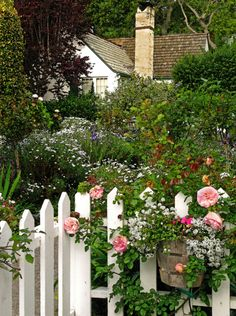 a picket fence with roses