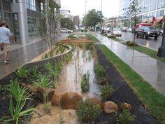DC DDOE bioretention cell sidewalk