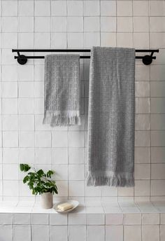 Black towel rail in modern bathroom with indoor plant and square white wall tiles. Black Towel Rail, Black Towels, White Wall Tiles, House Renos, Colorful Christmas Tree, Modern Bathrooms, Australian Homes, Interior Stylist, Colour Schemes