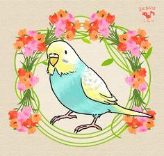 http://mameluriha.tumblr.com/post/132909759688/kimono-budgerigar-sing-a-song-budgerigar
