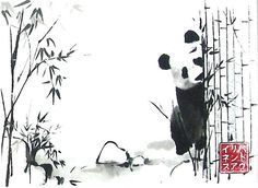 Playing with the panda