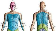 43 Post herpetic neuralgia ideas | herpetic neuralgia, neuralgia, postherpetic  neuralgia