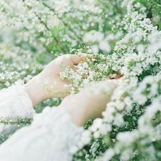 Hand Flowers, Love Flowers, Beautiful Flowers, Kubo And The Two Strings, Hand Photography, Photography Aesthetic, Spring Awakening, A Silent Voice, Anne Of Green Gables