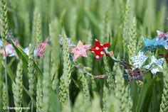 for inspiration: star garland