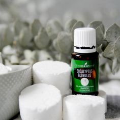 These essential oil infused DIY shower steamer disks are super easy to make and not only support winter wellness and seasonal issues but make your home smell like a spa! Diy Makeup Remover, Natural Makeup Remover, Young Living Eucalyptus, Eucalyptus Essential Oil, Eucalyptus Oil, Shower Steamers, Diy Shower, Best Essential Oils, Lotion Bars