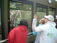 Biological Research Station And Adventure Center Slideshow | TripAdvisor™