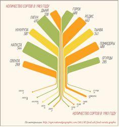 «Экология, поддержка местных небольших ферм – это все прекрасно. Но как ваши фермеры могут накормить мир?» Это самая серьезная претензия к идеологии и программе кооператива ЛавкаЛавка и схожим организациям в других странах. Борис Акимов отвечает скептикам. Ставка на семейные фермы - единственный шанс для Земли выйти на устойчивое развитие и избежать экологической катастрофы.
