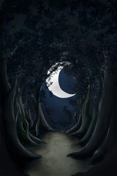 No that would be Wicca ~ Witchcraft is the study and use of Magic and the Occult Wicca Witchcraft, Pagan Witch, Way Of Life, The Life, Moon Magic, Beautiful Moon, Illustration, Spiritual Path, Moon Art