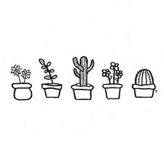 cute little succulents – Drawing Cute Drawings Tumblr, Cute Little Drawings, Cute Easy Drawings, Doodle Drawings, Doodle Art, Doodle Ideas, Succulents Drawing, Cactus Drawing, Succulents Art