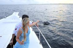 Enjoy a dolphin cruise around The Maldives