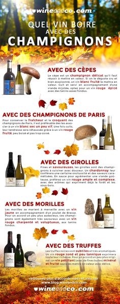 Quel Vin Boire avec des Champignons Mets Vins, High School French, Charcuterie Cheese, In Vino Veritas, Wine Cheese, Learn To Cook, Perfect Food, Wine Drinks, No Cook Meals