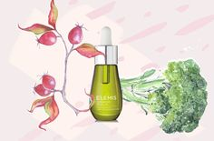 Psst: You definitely need to know about broccoli seed oil.