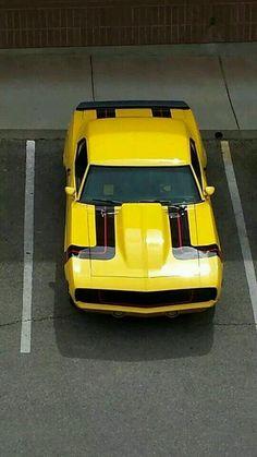 I totally adore this color for this chevy camaro 2018 Rat Rods, Lamborghini, Ferrari, Camaro 1969, Chevrolet Camaro, Camaro 2018, Corvette, Sexy Cars, Hot Cars
