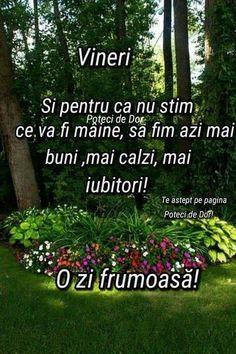 Phonetic Alphabet, Happy Birthday Wishes, Good Morning, Quotes, Plants, Decor, Bom Dia, Buen Dia, Quotations