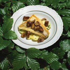 Das Rezept | Gegrillter Zander auf Kartoffelsalat mit Steinpilzen