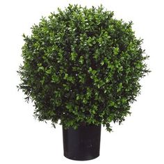 2'2' Boxwood Ball-Shaped Artificial Topiary w/Pot Indoor/Outdoor >>> To view further for this item, visit the image link.