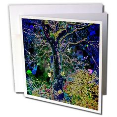 DYLAN SEIBOLD - PHOTO ABSTRACTION - MAGICAL TREE - 6 Gree... https://www.amazon.com/dp/B01MQ5SPWX/ref=cm_sw_r_pi_dp_x_3gxgyb2B50BQ3