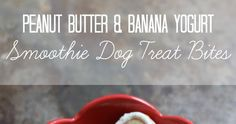 In the summer months (who are we kidding, anytime really), our dog, Basil, loves a food frozen treat . We're big fans of making natural t...