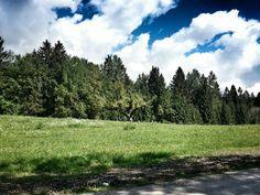 Val di Sella Trentino