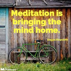 Meditation is bringing the mind home - Sogyal Rinpoche #meditation