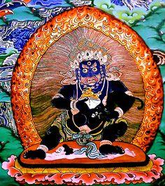 buddha to buddha coupon code