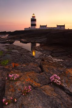 Hook Head by Michal Namysl on 500px