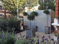 The Distinctive Gardener transforms a typical London terraced front garden, tackling the issue of storage, in only 3 days Garden Solutions, Gardening Services, Contemporary Garden, West London, Storage, Plants, Purse Storage, Larger, Plant