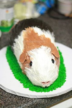 Guinea Pig Cake  Hilarious! Step by step process by www.6bittersweet.com
