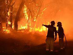 Almost of Australians now believe in climate change Australian Bush, Australian Homes, Adelaide South Australia, Wildland Firefighter, Fire Image, Scenery Paintings, Wild Fire, Australia Photos, Animal Species