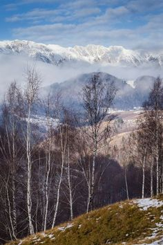 Cold Mountain Photo by Attila Szabó -- National Geographic Your Shot Cold Mountain, Carpathian Mountains, Mountain Photos, National Geographic Photos, Your Shot, Old Town, Amazing Photography, Medieval, Scenery