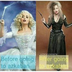 Harry Potter I bet even if Bellatrix was naturally a blonde she'd be dying her hair black just to keep the family honour going. Twilight Harry Potter, Memes Do Harry Potter, Images Harry Potter, Mundo Harry Potter, Harry Potter Cast, Harry Potter Universal, Harry Potter Fandom, Harry Potter Characters, Harry Potter Spells