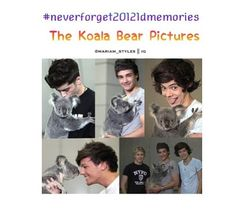 I have the poster of zayn and liam with the koalas. :) Why isn't niall holding one?