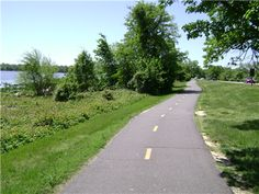 Along the GW Parkway in Alexandria; Mt Vernon Bike trail