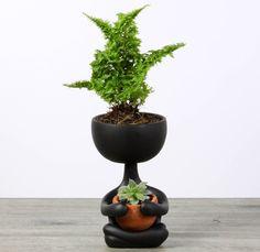 Cool Ceramic Tabletop Planter -Zen