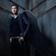 I watch #Dominion for the action, heart break & the wings!