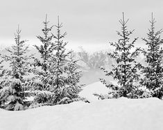 Free Image on Pixabay - Snow, Alps, Haute-Savoie Forest Landscape, Landscape Wallpapers, Ski France, Weekend France, Skier, Landscape Prints, Great Photos, Winter Wonderland, Snow