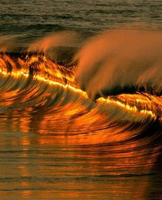 ✯ Golden Waves