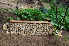 Champagne quarters. The first gabion wall we made for the property. Designed as a seat to look at our beautiful garden. Closest to the kitchen this would serve as place to toast in celebrations. Unfortunately it is close to our compost. Design flaw; we'll have to fix when we get back. Every summer pumpkin self seeds and fills most of this section of the garden. #gardendesign #gabionwall #rye #morningtonpeninsula #landscapedesign