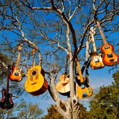 Music in the air!  Only in Austin, TX