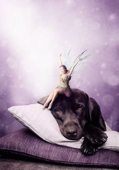 There is a Fairy on my Head by Neighya.deviantart.com on @deviantART