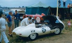 1959 Orange, South Pacific Championships, paddock, David Finch with the Jaguar D Type nr92, 2nd.