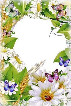 Borders For Paper, Borders And Frames, Rose Frame, Flower Frame, Creative Flower Arrangements, Happy Birthday Wallpaper, Printable Frames, Frame Background, Butterfly Frame