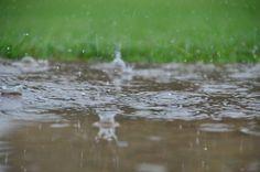 Dancing rain 2 By David Daugherty