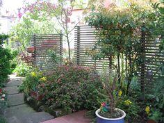 [ 28 Garten Sichtschutz Holz Pflanzen Sichtschutz Amp ]   Best Free Home  Design Idea U0026 Inspiration