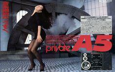 パイオニア Private A5